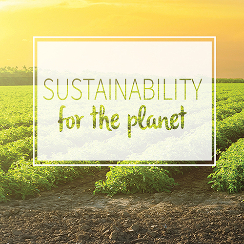 sustainability for the planet